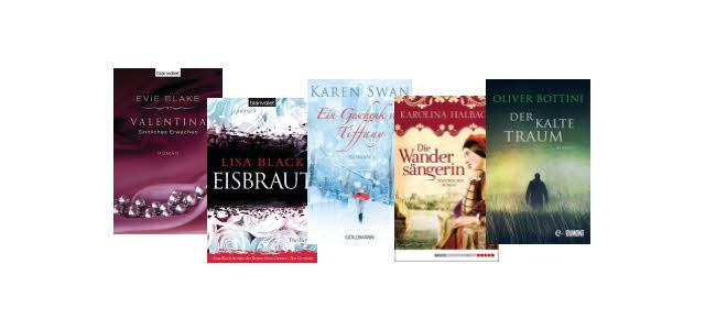 Lesetipps zum Wochenende: Die eBook Deals ab 13.12.2013